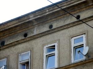 Dachbodenluken Payergasse 16